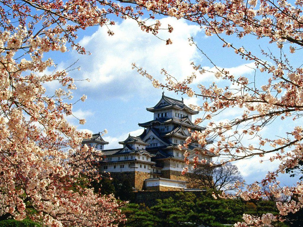 Resultado de imagem para japao paisagem